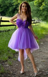 Tulle A Line Zipper Illusion Sleeveless with Appliques and Beading Homecoming Dress