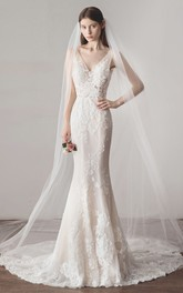 Simple Mermaid Wedding Dress With V-neck Sleeveless Lace And Illusion Top With Deep V-back