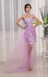 Sleeveless Fitted Short Tulle Dress With Appliques